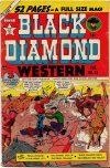 Cover For Black Diamond Western 23