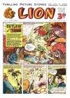 Cover For Lion 9