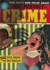 Cover For The Perfect Crime 23