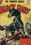 Cover For Black Fury 10