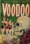 Cover For Voodoo 14
