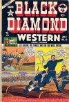 Cover For Black Diamond Western 13