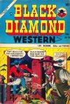 Cover For Black Diamond Western 54