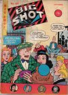 Cover For Big Shot 69