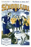 Cover For The Schoolgirl 517