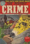 Cover For The Perfect Crime 33