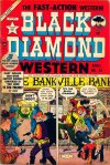 Cover For Black Diamond Western 44