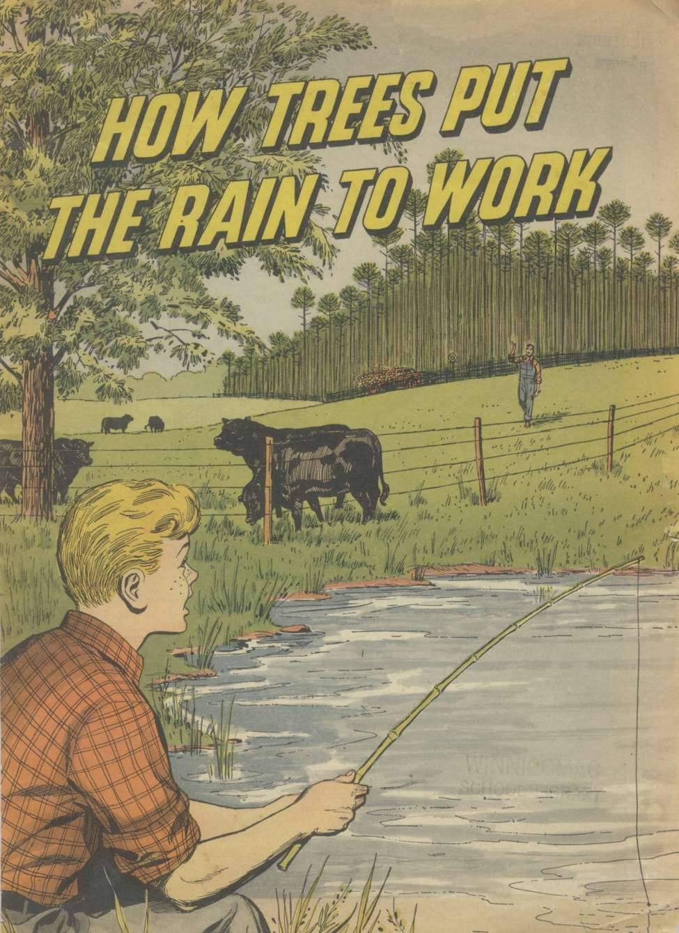 Comic Book Cover For How Trees Put the Rain to Work