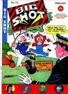 Cover For Big Shot 74