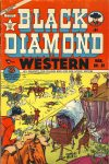 Cover For Black Diamond Western 32