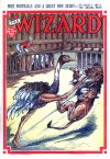 Cover For The Wizard 861