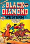 Cover For Black Diamond Western 36
