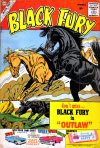 Cover For Black Fury 27