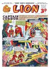 Cover For Lion 63