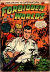 Cover For Forbidden Worlds 17