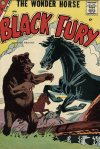 Cover For Black Fury 13