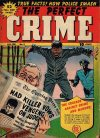 Cover For The Perfect Crime 8