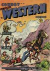 Cover For Cowboy Western 34