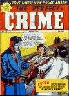 Cover For The Perfect Crime 21