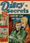 Cover For Diary Secrets 11