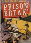 Cover For Prison Break! 5