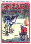 Cover For The Wizard 860