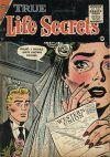 Cover For True Life Secrets 27