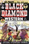 Cover For Black Diamond Western 22