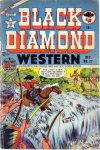 Cover For Black Diamond Western 27