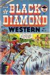 Cover For Black Diamond Western 27