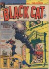 Cover For Black Cat 26