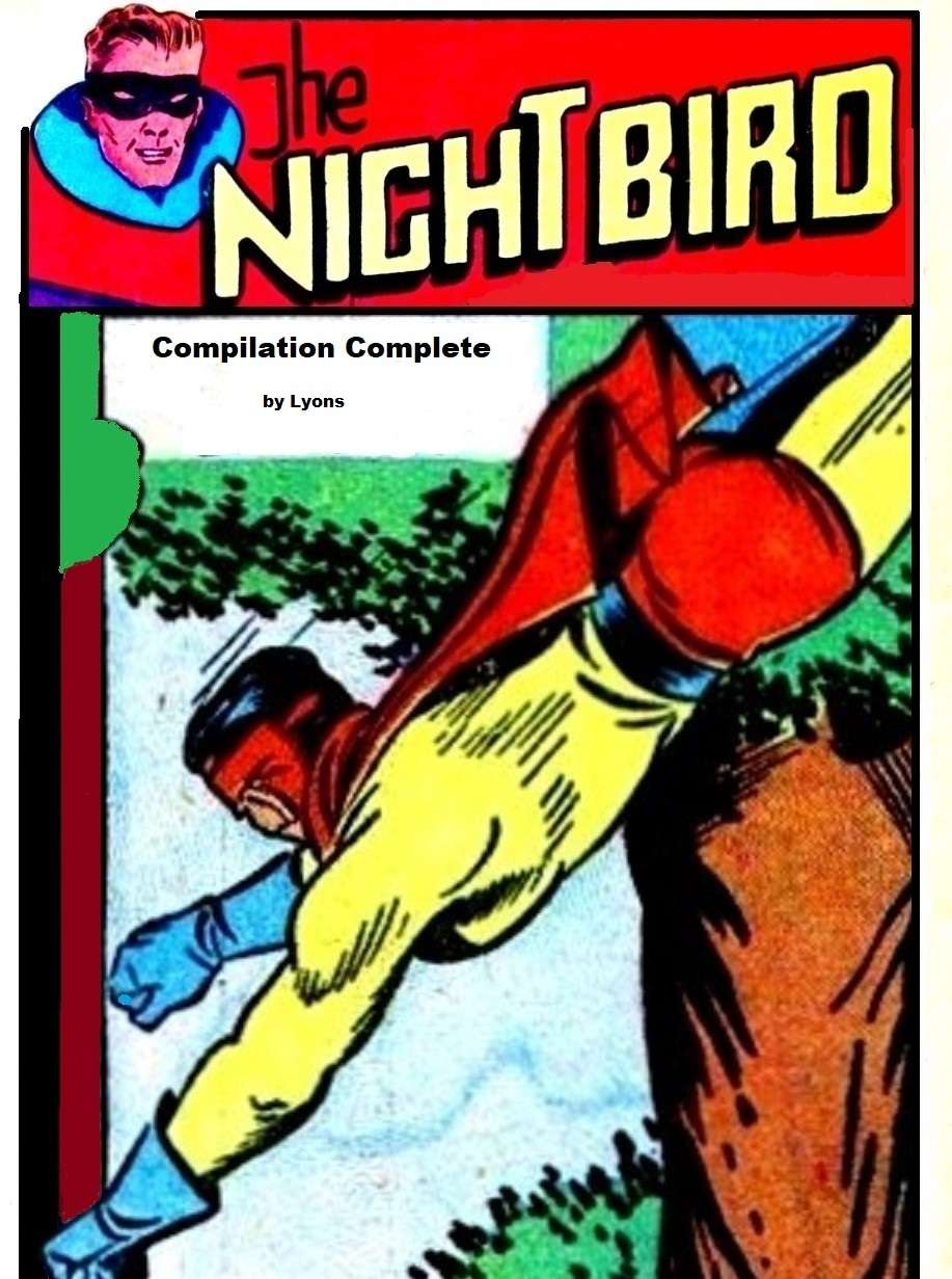 Comic Book Cover For The Night Bird