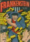 Cover For Frankenstein 21