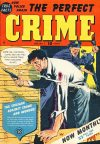 Cover For The Perfect Crime 7