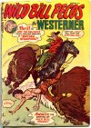 Cover For The Westerner 41