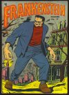 Cover For Frankenstein 19