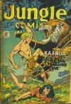 Cover For Jungle Comics 124
