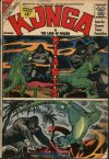 Cover For Konga 8
