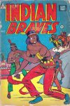 Cover For Indian Braves 4