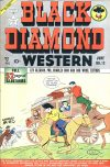 Cover For Black Diamond Western 12