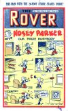 Cover For The Rover 1041