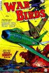 Cover For War Birds 3