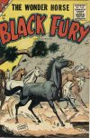 Cover For Black Fury 5