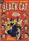 Cover For Black Cat 25