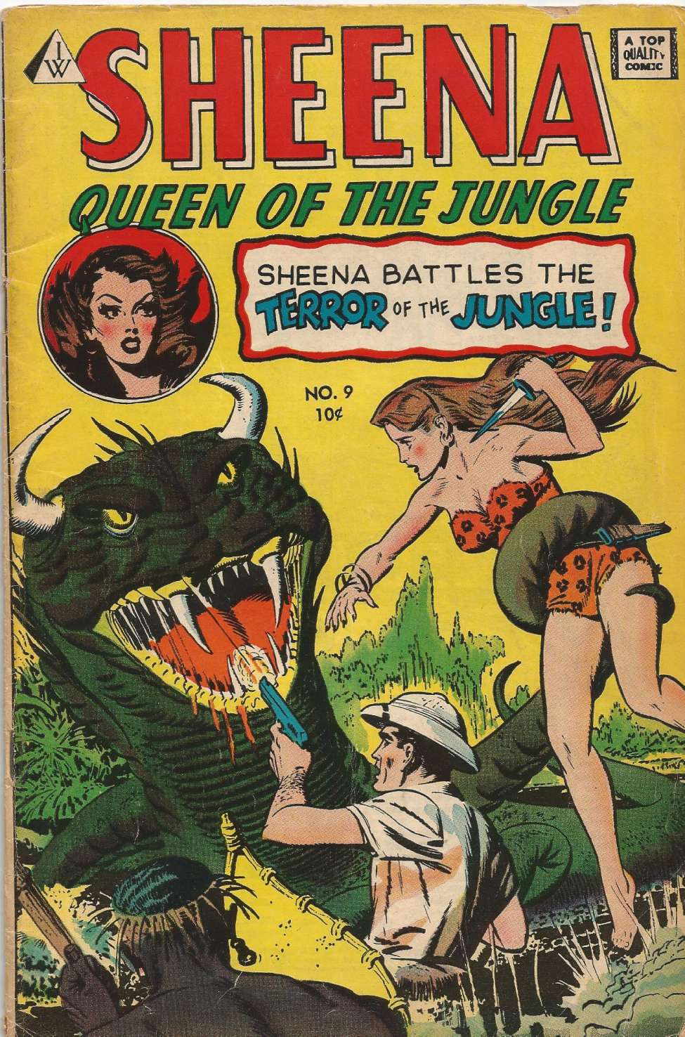 Comic Book Cover For Sheena, Queen of the Jungle 9