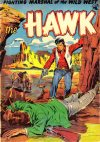 Cover For The Hawk 11