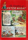 Cover For The Adventures of Peter Wheat 40