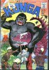 Cover For Konga 3
