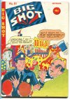 Cover For Big Shot 81