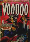 Cover For Voodoo 16
